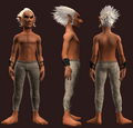 Animist's Wristguard of the Citadel (Equipped).png