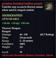 Pristine bristled leather pouch
