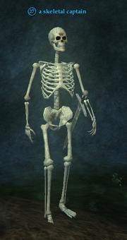 A skeletal captain
