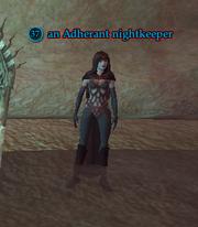 An Adherant nightkeeper