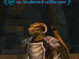An Awakened cellkeeper