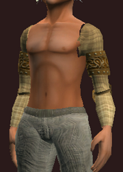 Plain Shoulderpads of the Far Seas Traders (Equipped)