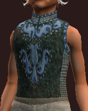 Protector's Moon Etched Tunic (Equipped)