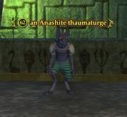 An Anashite thaumaturge
