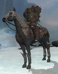 Undead Knight VIII (Apprentice)