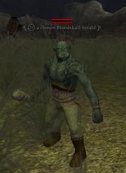 A chosen Bloodskull herald