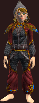 Vesspyr Citizen's Elaborate Red Tunic (Equipped)