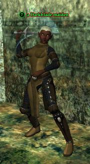 A Darkblade maiden (half elf)