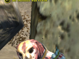An othmir survivor