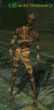 An Ara' Dal peasant (Solo)