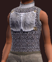 Ritualist's Darkened Rune Hauberk (Equipped)