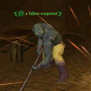 A Tallon warpriest