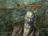 A drowned citizen