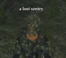 A lost sentry