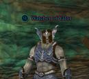 Watcher of Valor