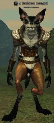 A Darkpaw mongrel