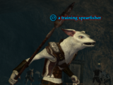 A training spearfisher