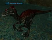A shadow raptor