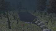Behemoth Pond