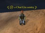 A Char'Gin sentry