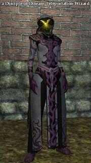 A Disciple of Disease Teleportation Wizard