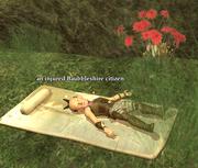 An injured Baubbleshire citizen