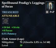 Spellbound Prodigy's Leggings of Focus
