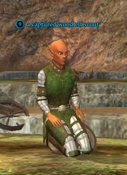A captured wood elf scout