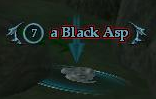A Black Asp