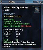 Bracers of the Springview Healer