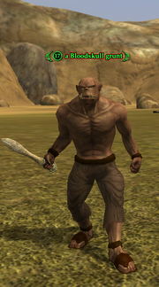 A Bloodskull grunt (Bloodskull Valley- The Training Grounds)