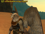 A Blacktalon wing clipper
