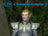 A Tunarian templar
