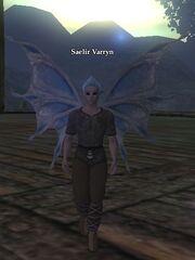 Saelir Varryn