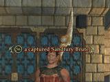 A captured Sandfury Brute