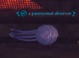 A paroxysmal observer