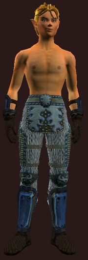 Chain Armor of the Cutthroat(Worn)