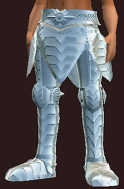 Polished parade greaves (Equipped)