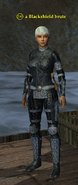 A Blackshield brute (Commonlands) (human)