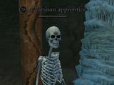 A Varsoon apprentice (Ruins of Varsoon)