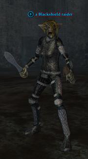 A Blackshield raider