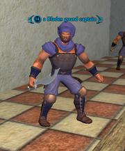 A Blades guard captain