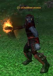 A Crushbone arsonist