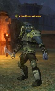 A Crushbone watchman (Greater Faydark)
