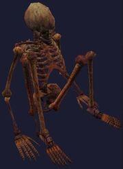 A tortured elf skeleton (Visible)