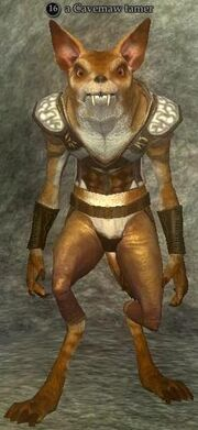 A Cavemaw tamer