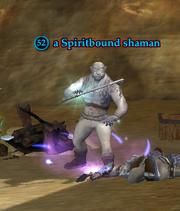 A Spiritbound shaman