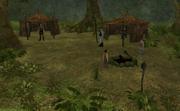 The Hidden Camp