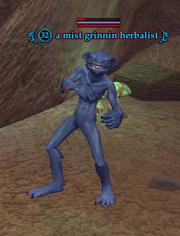 A mist grinnin herbalist