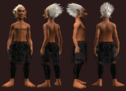 Animist's Chausses of the Citadel (Equipped)